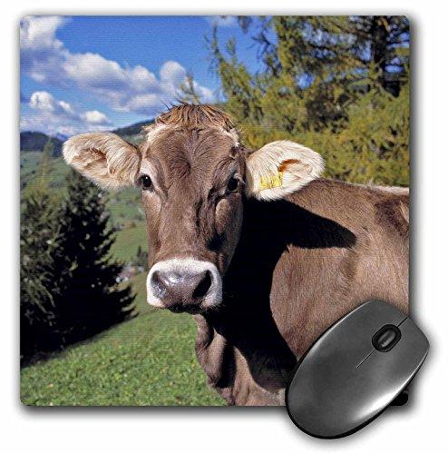 3d Rose 3dRose LLC 8 x 8 x 0.25 Inches Mouse Pad, Ric Erg...