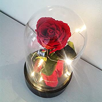 Cloche Verre Illuminee Led Et Rose Naturelle Eternelle La Belle