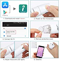 Caige Wireless Digital Microscope 2 Megapixel 50X-1000X HD USB Portable Microscope with Android and iOS Smartphone Or Tablet Windows Mac