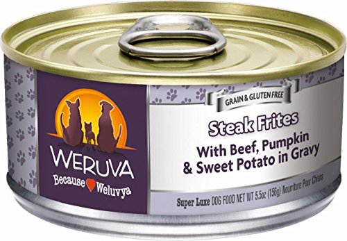 Weruva Classic Dog Food, Steak Frites with Beef, Pumpkin & Sweet Potato in Gravy, 5.5oz Can (Pack of 24)