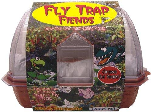Meat Eating Plants - DuneCraft Windowsill Greenhouses - Venus Fly Trap