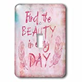 3dRose Andrea Haase Inspirational Typography - Watercolor Typography Find The Beauty In Every Day - Light Switch Covers - single toggle switch (lsp_271232_1)