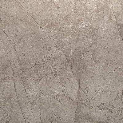 """Emser Tile """"Citadel"""" Porcelain Tile, 24"""" x 24"""", Gray"""