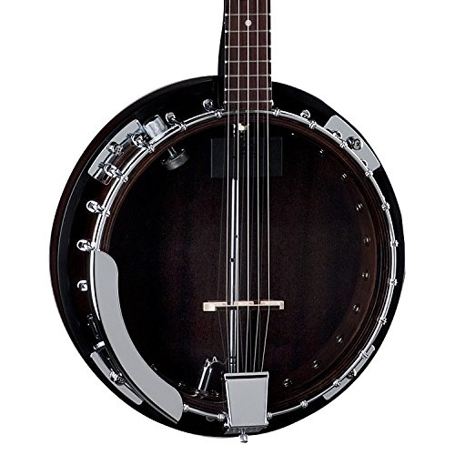 Dean Backwoods 2 Acoustic-Electric 5-String - Resonator Guitar Dean Chromes