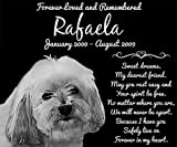 Personalized Havanese Dog Pet Memorial 12''x10'' Engraved Black Granite Grave Marker Head Stone Plaque RAF1
