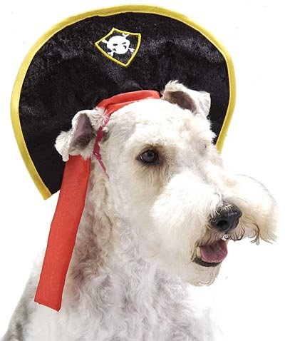 Pet Pirate Dog Costume Hat (Size  Small) by Pet Friendzy