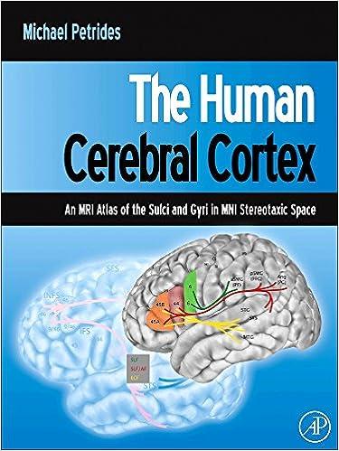 The Human Cerebral Cortex: An MRI Atlas of the Sulci and Gyri in MNI ...