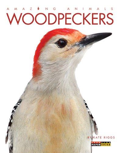 (Amazing Animals: Woodpeckers)