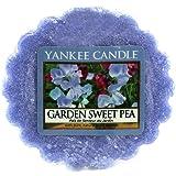 Yankee Candle 1152891 Bougie Tartelette en Cire Garden Sweet Pea Bleu