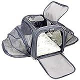 Jet Sitter V4 Expandable Airline Approved Dog Cat Pet Carrier Travel Bag (Large)