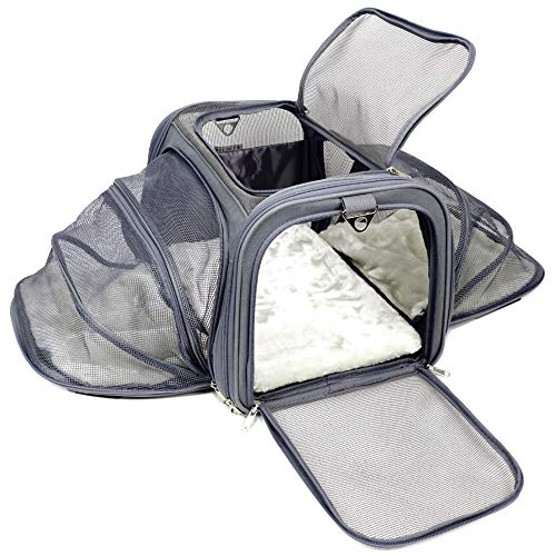 Jet Sitter Airline Approved Expandable Pet Dog Cat Carrier - Soft Sided Carriers Cats Dogs Travel Crate (Medium)
