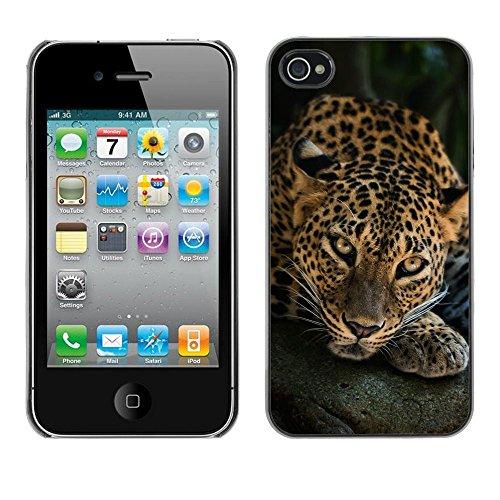 TopCaseStore / caoutchouc Hard Case Housse de protection la Peau - Leopard Big Cat Feline Animal Nature - Apple iPhone 4 / 4S