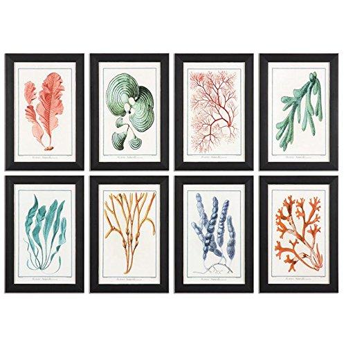 Uttermost Colorful Algae Framed Art, S/8 (Spring Uttermost)