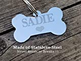Jinglrr Personalized Stainless Steel Dog Tags Cat