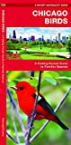 Chicago Birds: A Folding Pocket Guide to Familiar Species (Wildlife and Nature Identification)