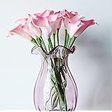 AIMADO 100 stücke Calla Samen Seltene Blumensamen Bonsai Topfpflanze Mehrjährige Blumen