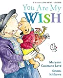 img - for You Are My Wish book / textbook / text book