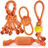 Grriggles 24 Piece Ruff Rope Toys Pack