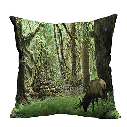 YouXianHome Decorative Throw Pillow Case Roosevelt Elk in Rainforest Wildlife National Park Washington Antlers Theme Green Brown Ideal Decoration(Double-Sided Printing) 16x16 inch