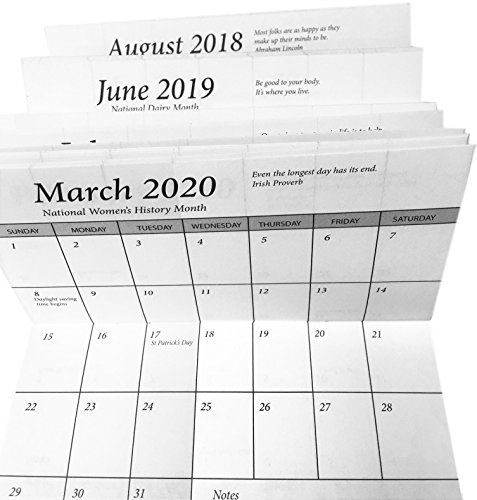 3 Year Datebook 2018 - 19 plus 2020 Pocket Calendar Planner (Vinyl Pocket Planner)