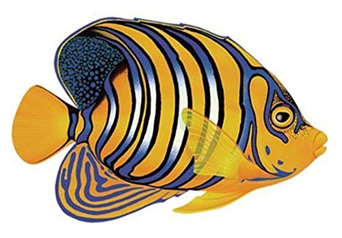 (Regal Angelfish Porcelain Swimming Pool Mosaic (5