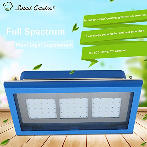 Shenzhen Led Grow Light Factory in US - 5