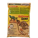 Worldwide Reptile Sciences Terrarium Sand, 10-Pound, Natural Sedona