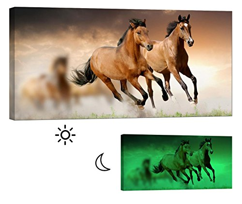 Painting on Canvas, Glow in the Dark Wall Art Framed Print, No Energy Use - Brown Stallions Galloping (46 x 24 - Art Equestrian Canvas