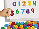 Lakeshore Magnetic Numbers
