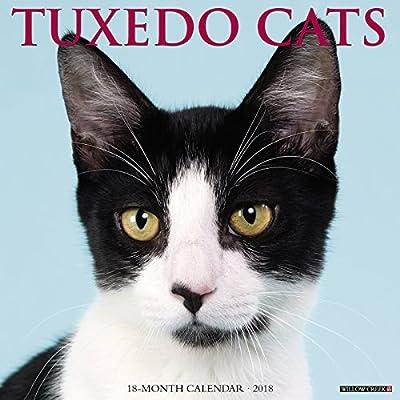 2018 Just Tuxedo Cats Wall Calendar