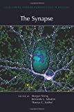 The Synapse, , 1936113023