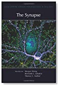 The Synapse (Cold Spring Harbor Perspectives in Biology)