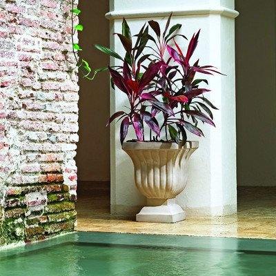 Novelty Urn and Statue Planter Color: Mocha