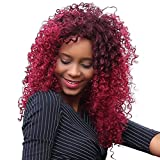 LUNIWEI Shaggy Afro Curly Heat Resistant Synthetic Fashion Wig Hair