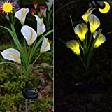 Chasgo Calla Lily Solar Garden Lights, Waterproof Solar Flowers Gardening Decor Gifts for Mom Backyard Patio Grave Pathway Lights (White)