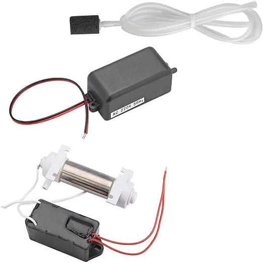 DGTRHTED Generador de ozono - 500mg Ozonizador Tubo generador de ozono con Accesorios para purificador de Aire en el hogar Esterilizador: Amazon.es: Hogar