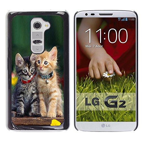 STPlus Gato en una caja Animal Carcasa Funda Rigida Para LG G2 #14