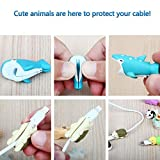 RHCPFOVR 12PCS Cable Bites for iPhone Cable Cord Cute Animal Phone Data Line Cell Phone Accessories Protects Cable Creative Gift