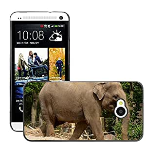 Hot Style Cell Phone PC Hard Case Cover // M00309830 Elephant Animal Mammal Nature Trunk // HTC One M7