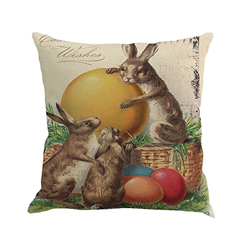 (Happy Easter Throw Pillow Covers Rabbit Chick Eggs Lily Printed Pillowcases Spring Holiday Bunny Cushion Cases for Home Decor Vintage Colored Creative Design 18'' x 18'' (B))