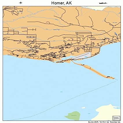 Homer Alaska Map Area.Amazon Com Image Trader Large Street Road Map Of Homer Alaska Ak