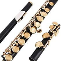 Glory Closed Hole C Flute With Case, Tuning Rod and Cloth,Joint Grease and Gloves black/Laquer-More Colors available,Click to see more colors