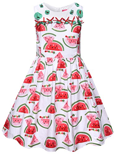 Big Kids Watermelon Apparel - Bonny Billy Big Girls Clothing Sleeveless Summer Dress 8-12 Watermelon