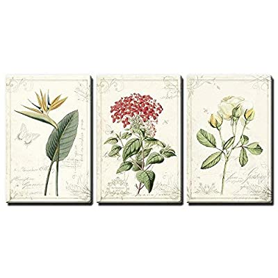 Handsome Picture, Classic Design, 3 Panel Vintage Style Plants and Flowers x 3 Panels