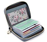 Women's Credit Card Case Wallet With 2 ID Window and Zipper Card Holder Purse (Blue)