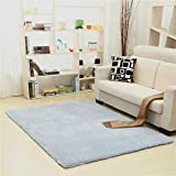WAN SAN QIAN- Children Bedroom Carpet Nordic Carpet Living Room Carpet Sofa Europe Princess Rectangle Blended Carpet Coarse Shag Rug Rug ( Color : Blue , Size : 120x200cm )
