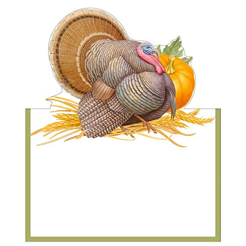 Thanksgiving Place Cards Table Decorations No Place Card Holders Needed Die Cut Turkey Pk 16