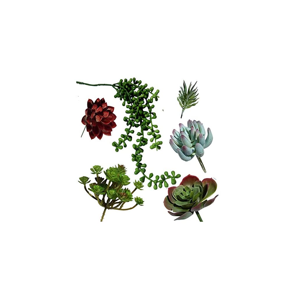 Plantastyck-Artificial-Succulent-Plant-Picks-Unpotted-Assorted-Faux-Echeveria-Fake-Succulent-6-Pack-in-Greens-Red-for-Floral-Arrangement-Home-Decor-Wedding-Fairy-Garden-Bouquet-Centerpiece