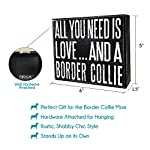 JennyGems - All You Need is Love and a Border Collie - Real Wood Stand Up Box Sign - Border Collie Gift Series - Border Collie Moms and Owners - Shelf Knick Knacks 8