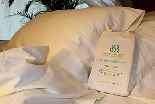Sleep Beyond 100 Organic Cotton Pillow Case Pair, St. Q 20×32
